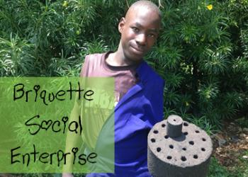 briquette image