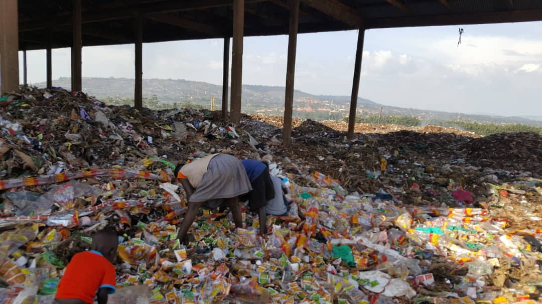 A picture of children searching for things to sell or eat in the rubbish